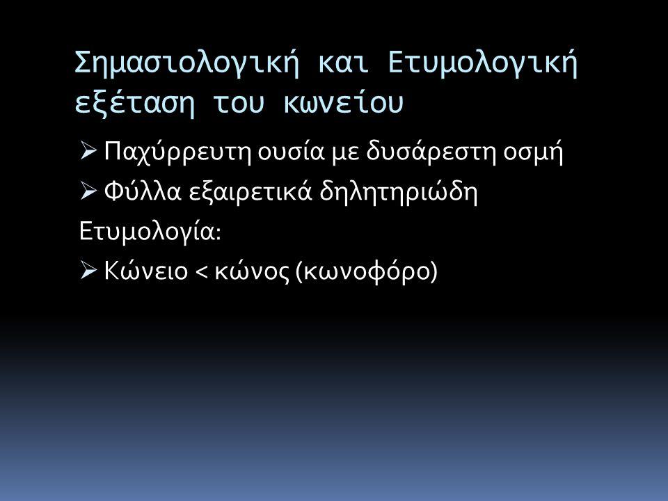 Επιφανή Πρόσωπα Που Θανατώθηκαν Στην Αρχαιότητα Με Κώνειο Θηραμένης  Αθηναίος πολιτικός  Συνέβαλε στην ανατροπή της δημοκρατίας, σύντομα όμως προσχώρησε στους δημοκρατικούς (κόθορνος)