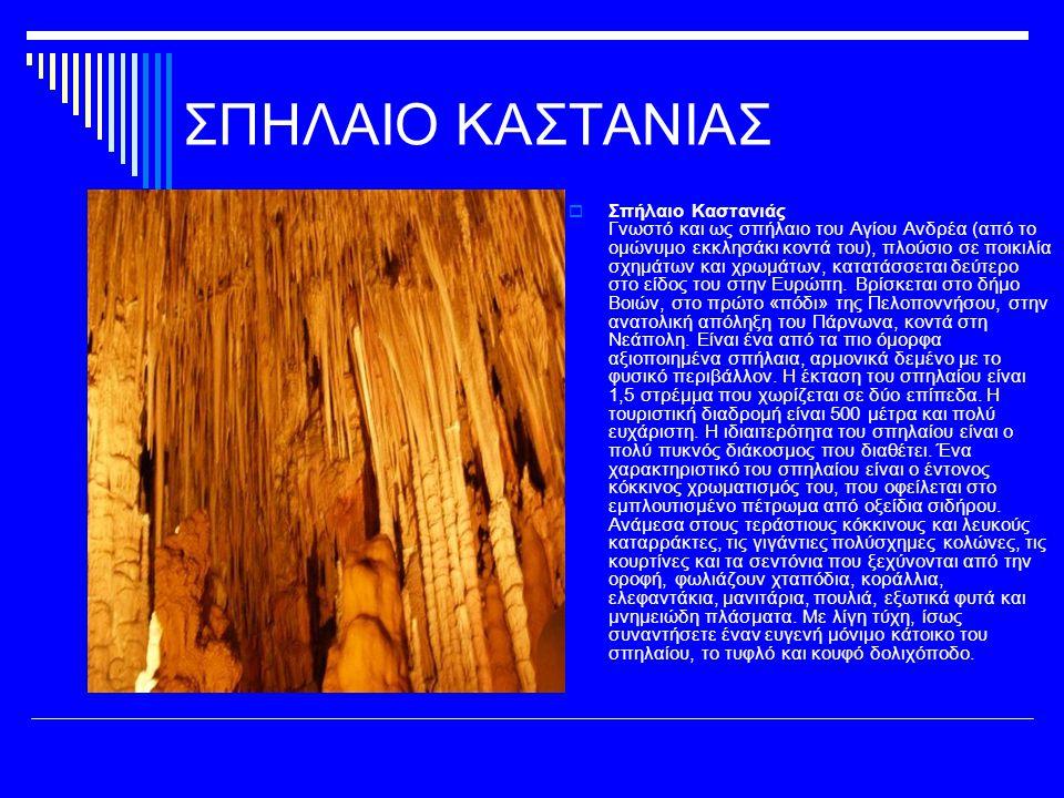 ΣΠΗΛΑΙΟ ΚΑΣΤΑΝΙΑΣ  Σπήλαιο Καστανιάς Γνωστό και ως σπήλαιο του Αγίου Ανδρέα (από το ομώνυμο εκκλησάκι κοντά του), πλούσιο σε ποικιλία σχημάτων και χρωμάτων, κατατάσσεται δεύτερο στο είδος του στην Ευρώπη.