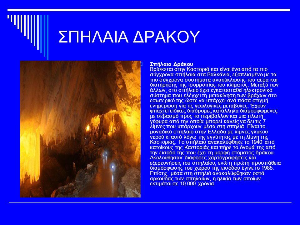 ΣΠΗΛΑΙΟ ΚΑΨΙΑ  Σπήλαιο Κάψια Βρίσκεται περίπου 1,5 χλμ.