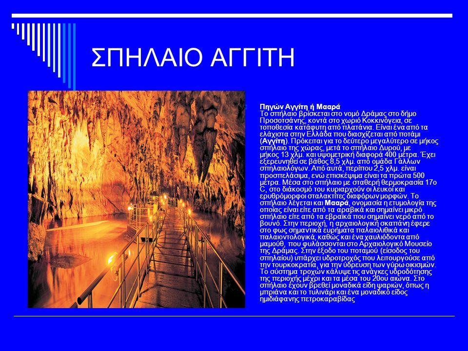 ΣΠΗΛΑΙΟ ΠΙΤΣΩΝ  Σπήλαιο Πιτσών Βρίσκεται κοντά στο Ξυλόκαστρο του νομού Κορινθίας κι ανακαλύφθηκε το 1934 τυχαία από βοσκούς της περιοχής.