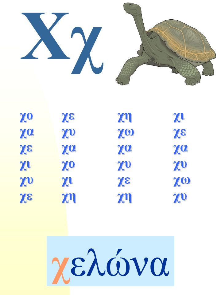 Χχ χελώνα