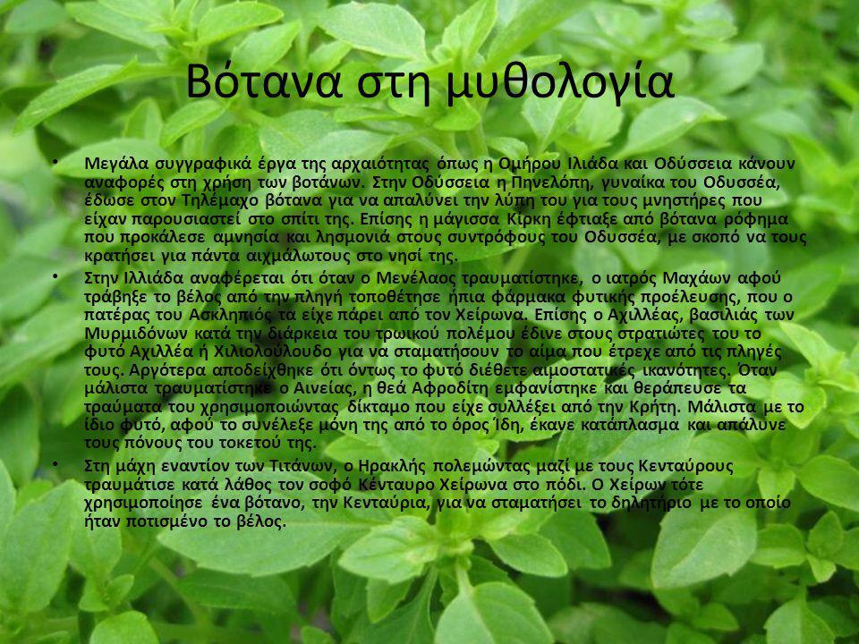 Βότανα στη μυθολογία Μεγάλα συγγραφικά έργα της αρχαιότητας όπως η Ομήρου Ιλιάδα και Οδύσσεια κάνουν αναφορές στη χρήση των βοτάνων. Στην Οδύσσεια η Π