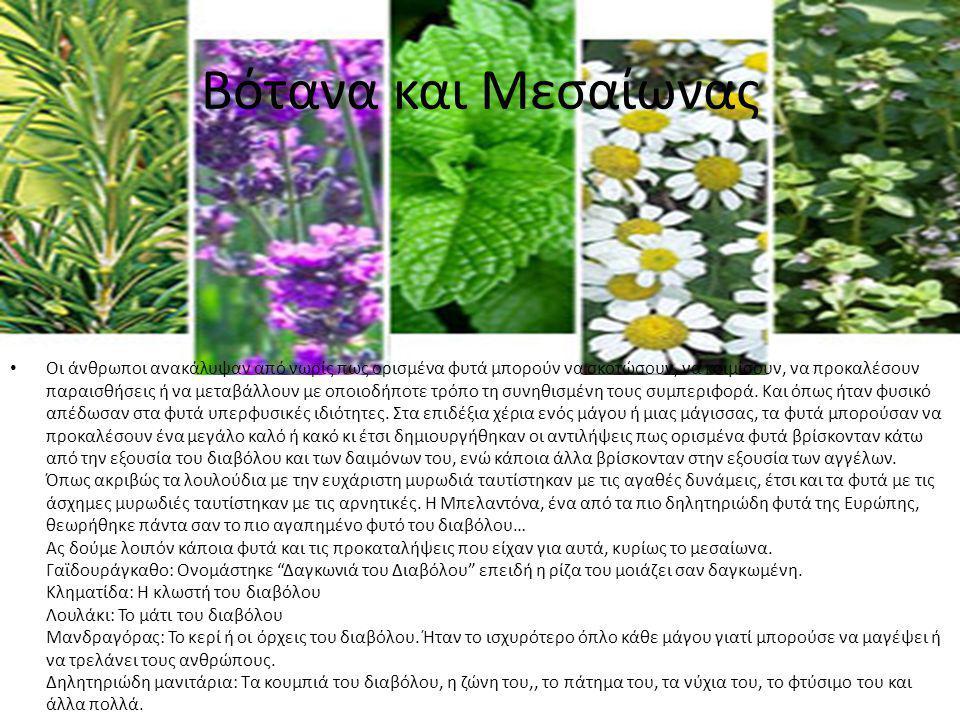 Βότανα και Μεσαίωνας Οι άνθρωποι ανακάλυψαν από νωρίς πως ορισμένα φυτά μπορούν να σκοτώσουν, να κοιμίσουν, να προκαλέσουν παραισθήσεις ή να μεταβάλλο