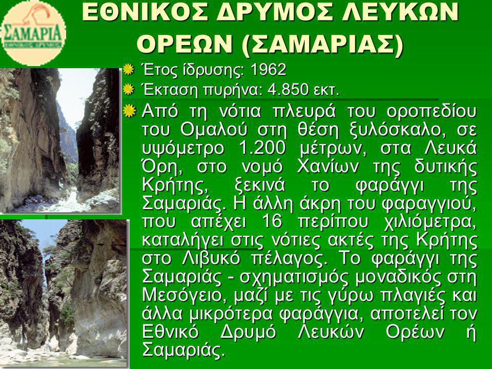 ΕΘΝΙΚΟΣ ΔΡΥΜΟΣ ΛΕΥΚΩΝ ΟΡΕΩΝ (ΣΑΜΑΡΙΑΣ) Έτος ίδρυσης: 1962 Έκταση πυρήνα: 4.850 εκτ.