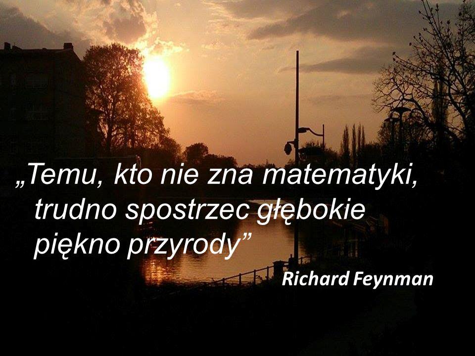 """""""Temu, kto nie zna matematyki, trudno spostrzec głębokie piękno przyrody Richard Feynman"""