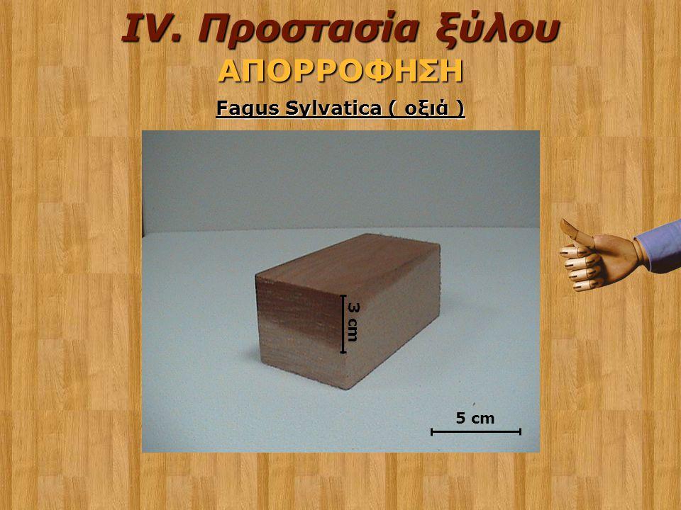 3 cm Fagus Sylvatica ( οξιά ) 5 cmΑΠΟΡΡΟΦΗΣΗ IV. Προστασία ξύλου