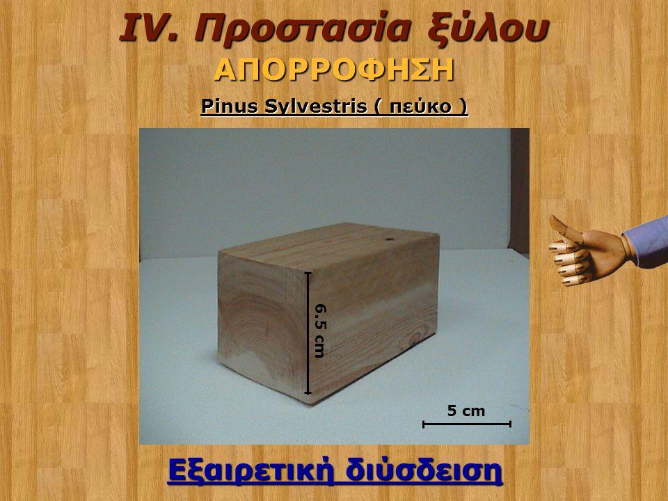 Εξαιρετική διύσδειση 6.5 cm Pinus Sylvestris ( πεύκο ) 5 cm IV. Προστασία ξύλου ΑΠΟΡΡΟΦΗΣΗ
