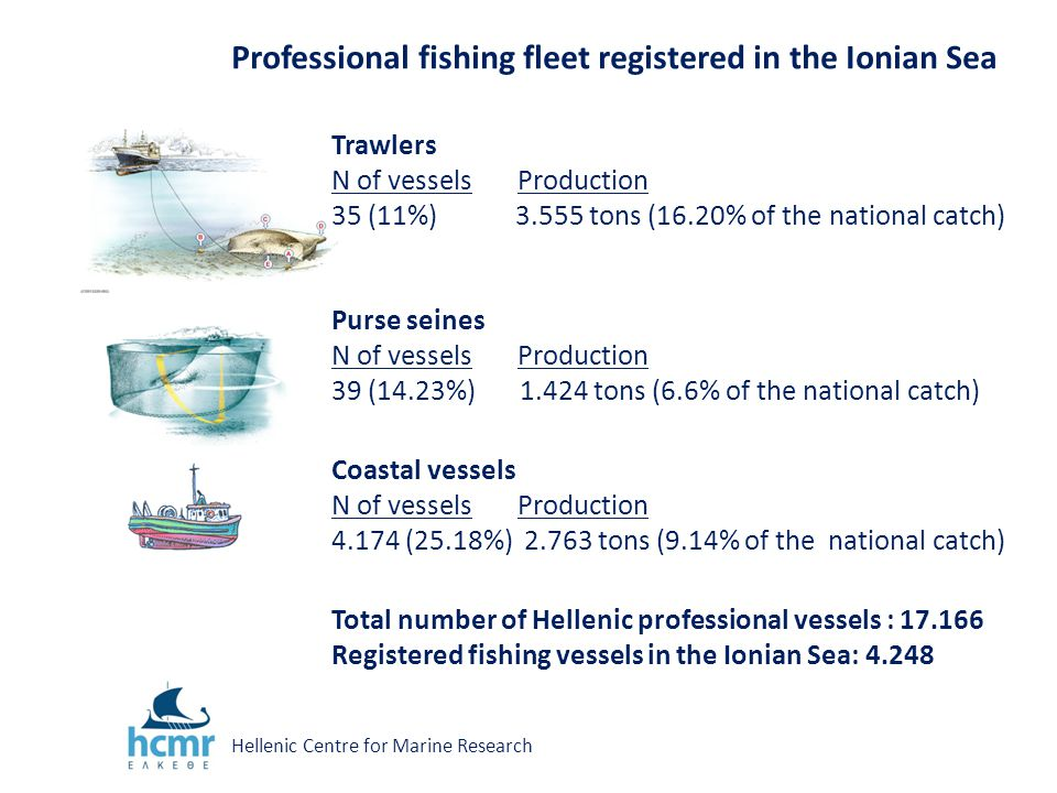 Professional fishing fleet registered in the Ionian Sea Trawlers N of vessels Production 35 (11%) 3.555 tons (16.20% of the national catch) Purse seines N of vessels Production 39 (14.23%) 1.424 tons (6.6% of the national catch) Coastal vessels N of vessels Production 4.174 (25.18%) 2.763 tons (9.14% of the national catch) Total number of Hellenic professional vessels : 17.166 Registered fishing vessels in the Ionian Sea: 4.248 Hellenic Centre for Marine Research