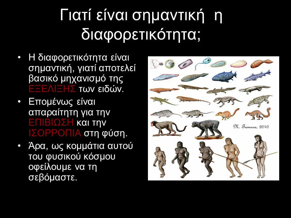 Γιατί είναι σημαντική η διαφορετικότητα; Η διαφορετικότητα είναι σημαντική, γιατί αποτελεί βασικό μηχανισμό της ΕΞΕΛΙΞΗΣ των ειδών.