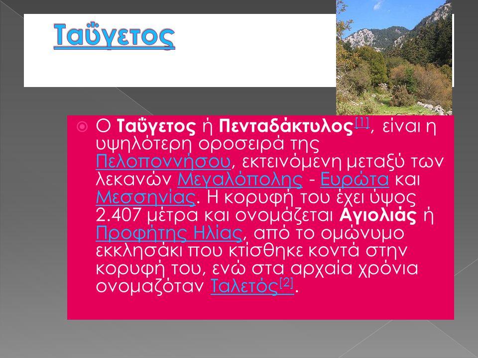  Ο Ταΰγετος ή Πενταδάκτυλος [1], είναι η υψηλότερη οροσειρά της Πελοποννήσου, εκτεινόμενη μεταξύ των λεκανών Μεγαλόπολης - Ευρώτα και Μεσσηνίας. Η κο