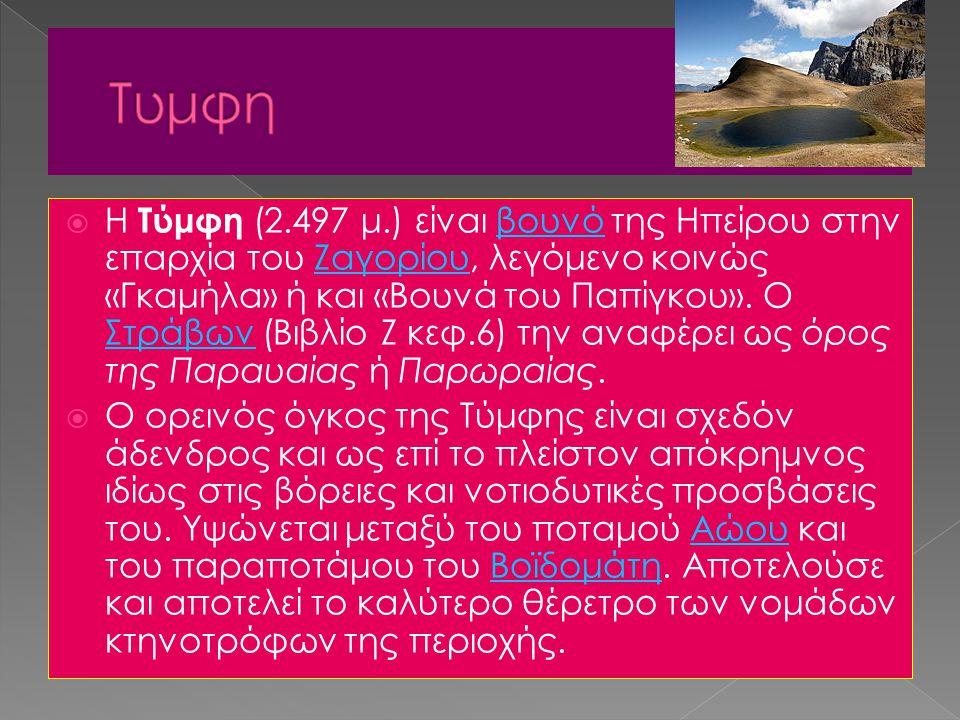  Η Τύμφη (2.497 μ.) είναι βουνό της Ηπείρου στην επαρχία του Ζαγορίου, λεγόμενο κοινώς «Γκαμήλα» ή και «Βουνά του Παπίγκου». Ο Στράβων (Βιβλίο Ζ κεφ.
