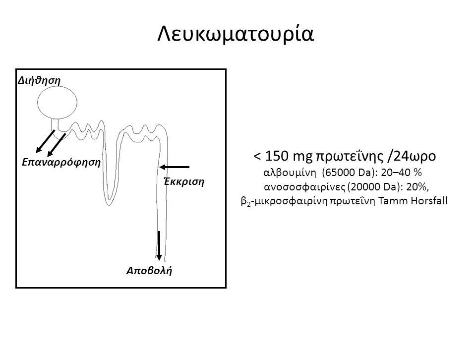 Διήθηση Επαναρρόφηση Αποβολή Έκκριση Λευκωματουρία < 150 mg πρωτεΐνης /24ωρο αλβουμίνη (65000 Da): 20–40 % ανοσοσφαιρίνες (20000 Da): 20%, β 2 -μικροσ