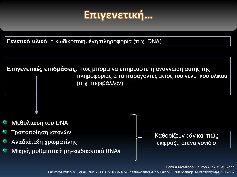 Μεθυλίωση του DNA Τροποποίηση ιστονών Αναδιάταξη χρωματίνης Μικρά, ρυθμιστικά μη-κωδικοποιά RNAs Denk & McMahon.