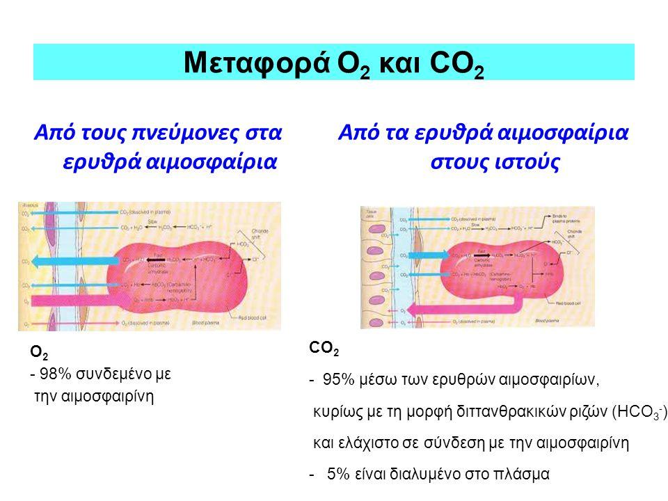 Από τους πνεύμονες στα ερυθρά αιμοσφαίρια Από τα ερυθρά αιμοσφαίρια στους ιστούς Μεταφορά Ο 2 και CO 2 CO 2 - 95% μέσω των ερυθρών αιμοσφαιρίων, κυρίω