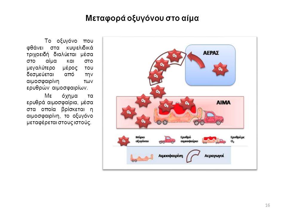 Μεταφορά οξυγόνου στο αίμα Το οξυγόνο που φθάνει στα κυψελιδικά τριχοειδή διαλύεται μέσα στο αίμα και στο μεγαλύτερο μέρος του δεσμεύεται από την αιμο