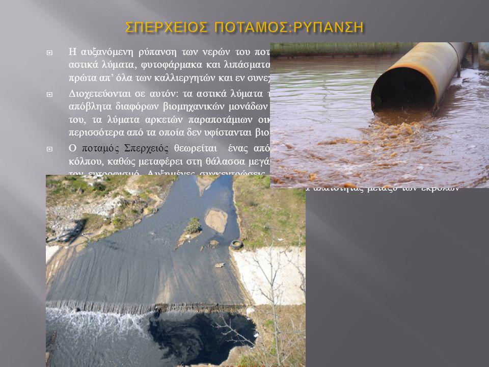 Στην προστατευόμενη μέσω του NATURA 2000 και ιδιαίτερης οικολογικής σημασίας περιοχή της κοιλάδας του Σπερχειού, αλλά και οικονομικής αξίας για την ευρύτερη περιοχή της Λαμίας, η Νομαρχιακή Αυτοδιοίκηση Φθιώτιδας οφείλει να ενεργήσει για τα ακόλουθα :  Έλεγχος βιομηχανικών εγκαταστάσεων, ελαιοτριβείων, αγροτικών και κτηνοτροφικών εγκαταστάσεων, που γειτονεύουν με το Σπερχειό, για το αν ρυπαίνουν, και σε ποιο βαθμό, με τα απόβλητά τους τα νερά του ποταμού.