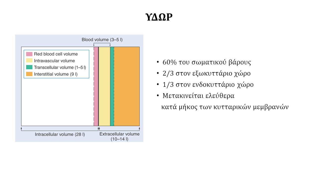 ΝΕΦΡΙΚΗ ΑΠΟΒΟΛΗ ΚΑΙ ΕΠΑΝΑΡΡΟΦΗΣΗ ΥΔΑΤΟΣ ΥΠΕΡΟΣΜΩΤΙΚΑ ΟΥΡΑ – ΚΑΘΑΡΣΗ ΕΛΕΥΘΕΡΟΥ ΥΔΑΤΟΣ V= Cosm – CH 2 0 CH 2 O = Cosm - V Cosm = (Uosm x V) / Posm CH 2 0 = (Uosm x V) / Posm -V