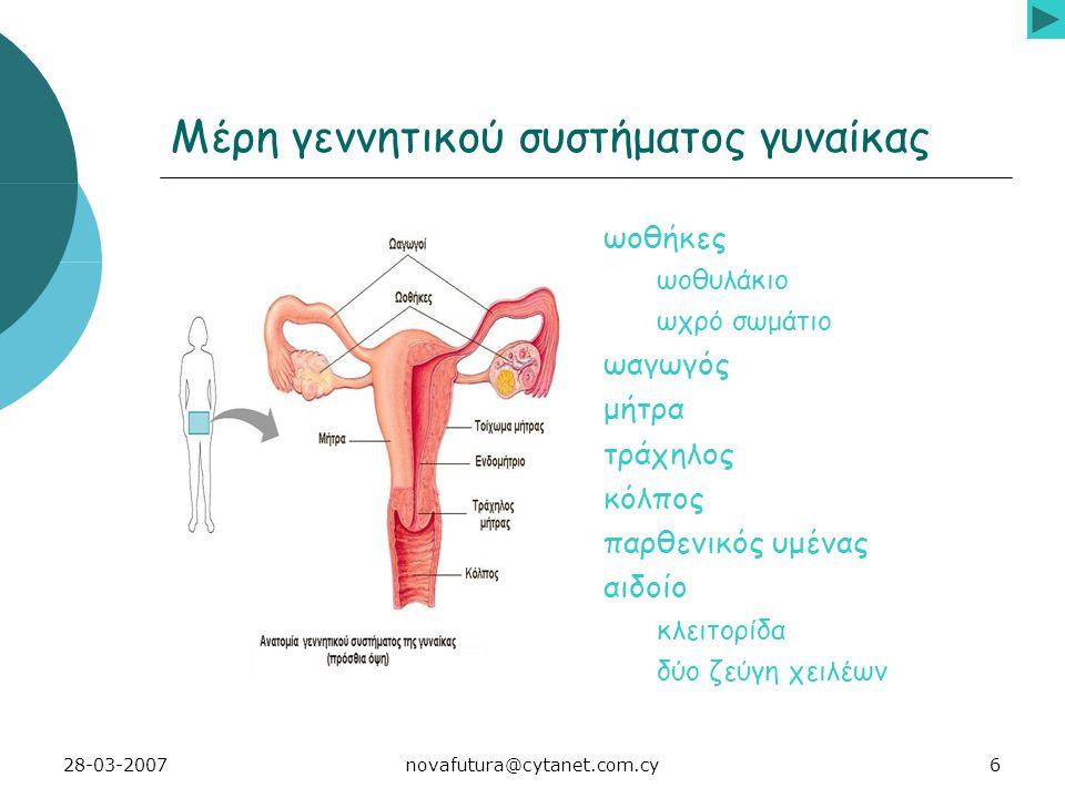 6novafutura@cytanet.com.cy28-03-2007 Μέρη γεννητικού συστήματος γυναίκας ωοθήκες ωοθυλάκιο ωχρό σωμάτιο ωαγωγός μήτρα τράχηλος κόλπος παρθενικός υμένας αιδοίο κλειτορίδα δύο ζεύγη χειλέων