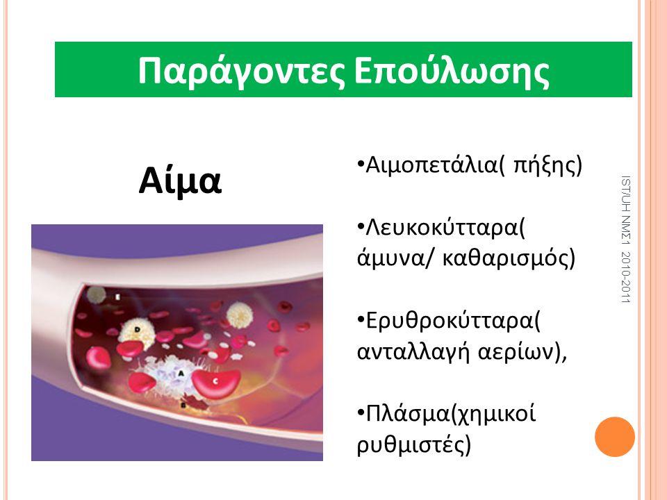 Μ Παράγοντες επούλωσης Πέσα Επούλωσης- 1 Aίμα Αιμοπετάλια( πήξης) Λευκοκύτταρα( άμυνα/ καθαρισμός) Ερυθροκύτταρα( ανταλλαγή αερίων), Πλάσμα(χημικοί ρυ