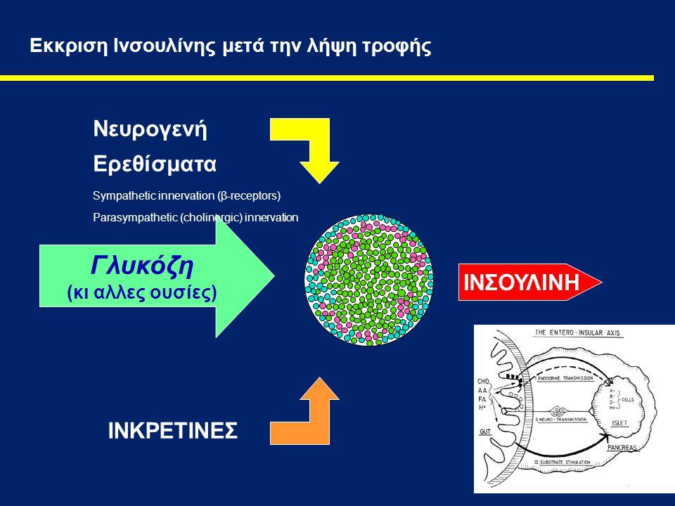 2 Εκκριση Ινσουλίνης μετά την λήψη τροφής Γλυκόζη (κι αλλες ουσίες) ΙΝΣΟΥΛΙΝΗ ΙΝΚΡΕΤΙΝΕΣ Νευρογενή Ερεθίσματα Sympathetic innervation (β-receptors) Pa