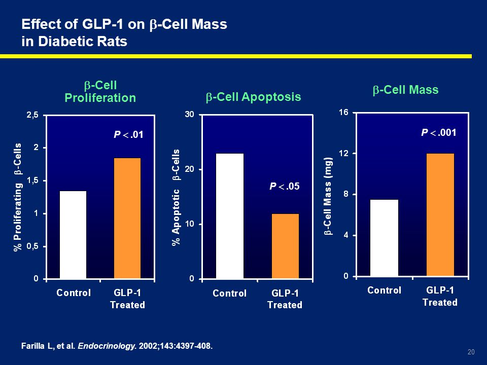 20 Farilla L, et al. Endocrinology. 2002;143:4397-408. Effect of GLP-1 on  -Cell Mass in Diabetic Rats P .001 P .05 P .01  -Cell Mass  -Cell Apo