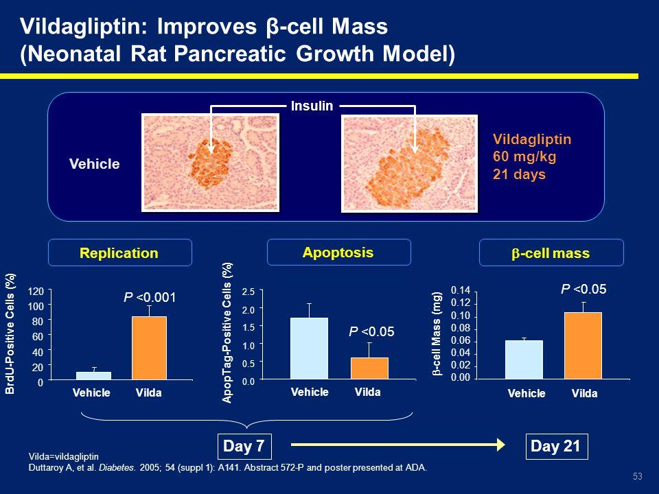 53 Vildagliptin: Improves β-cell Mass (Neonatal Rat Pancreatic Growth Model) Vilda=vildagliptin Duttaroy A, et al. Diabetes. 2005; 54 (suppl 1): A141.