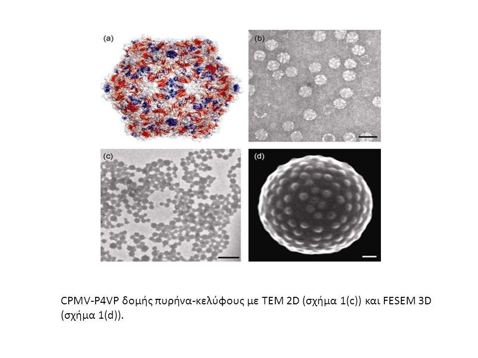 CPMV-P4VP δομής πυρήνα-κελύφους με ΤΕΜ 2D (σχήμα 1(c)) και FESEM 3D (σχήμα 1(d)).