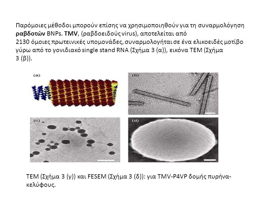 Παρόμοιες μέθοδοι μπορούν επίσης να χρησιμοποιηθούν για τη συναρμολόγηση ραβδοτών BNPs. TMV, (ραβδοειδούς virus), αποτελείται από 2130 όμοιες πρωτεινι