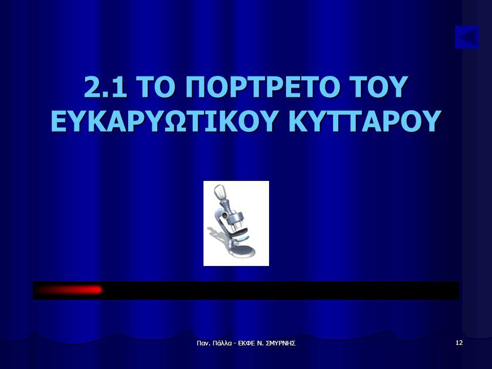 Παν. Πάλλα - ΕΚΦΕ Ν. ΣΜΥΡΝΗΣ 12 2.1 ΤΟ ΠΟΡΤΡΕΤΟ ΤΟΥ ΕΥΚΑΡΥΩΤΙΚΟΥ ΚΥΤΤΑΡΟΥ
