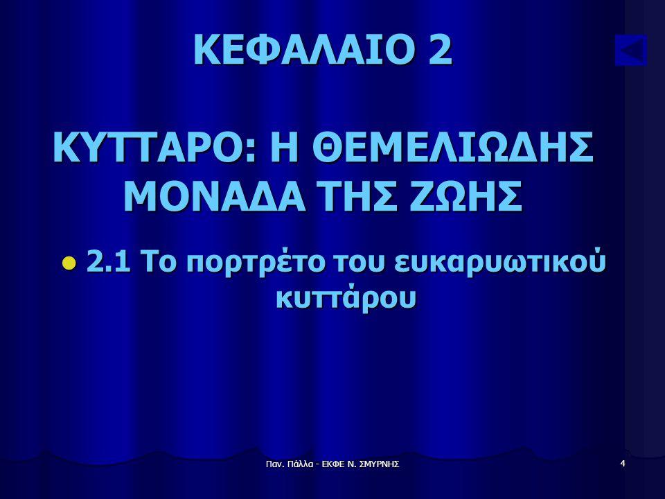 Παν. Πάλλα - ΕΚΦΕ Ν. ΣΜΥΡΝΗΣ 5 ΚΕΦΑΛΑΙΟ 2
