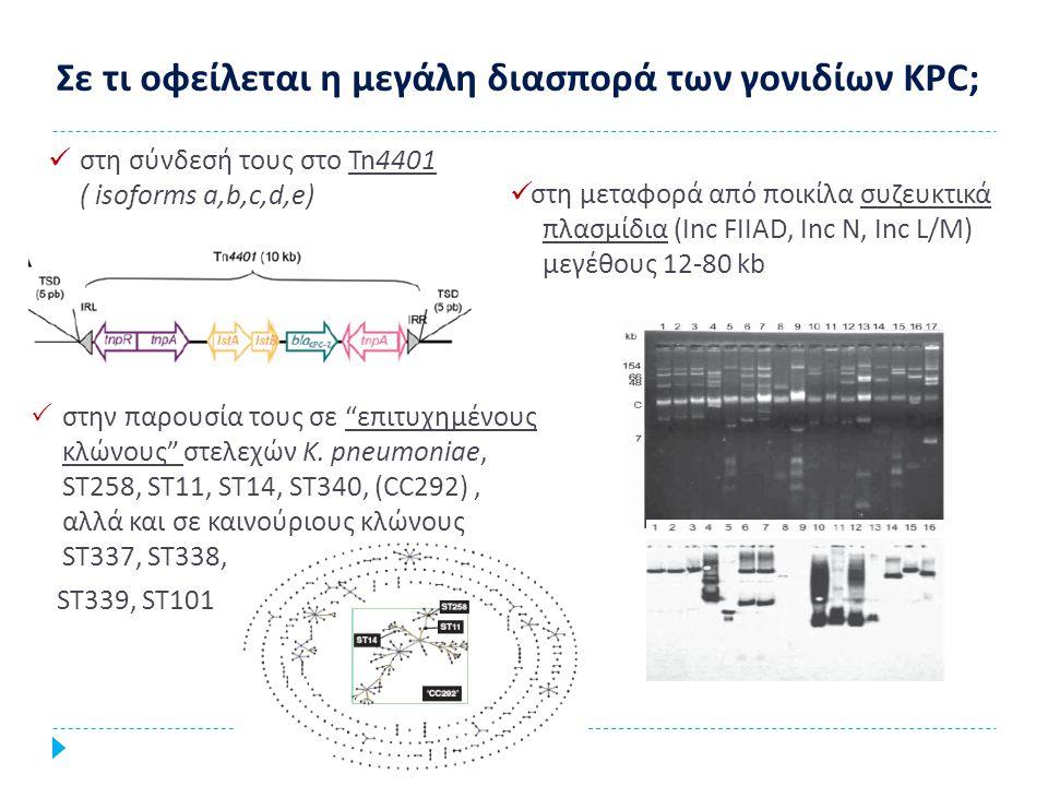 Σε τι οφείλεται η μεγάλη διασπορά των γονιδίων KPC; στη σύνδεσή τους στο Tn4401 ( isoforms a,b,c,d,e) στη μεταφορά από ποικίλα συζευκτικά πλασμίδια (Ι
