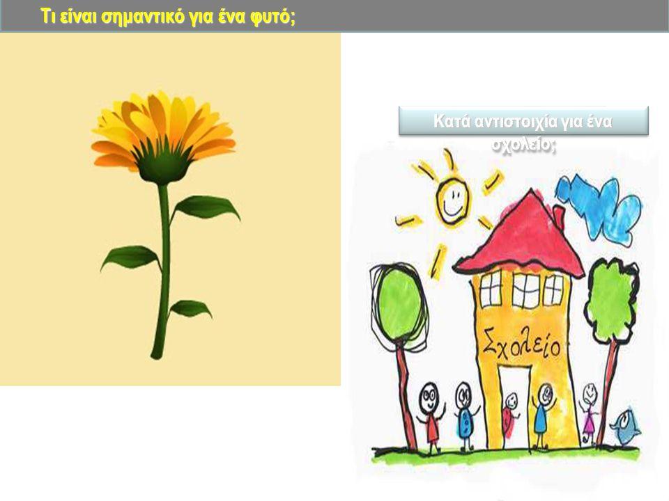 Τι είναι σημαντικό για ένα φυτό; Κατά αντιστοιχία για ένα σχολείο;