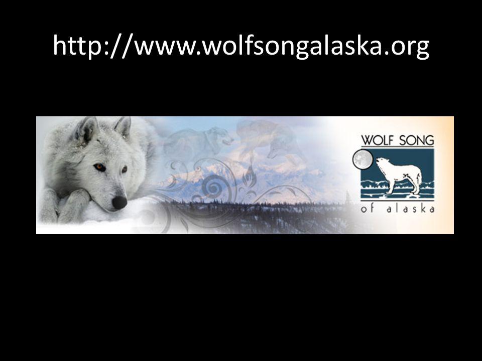 http://www.wolfsongalaska.org