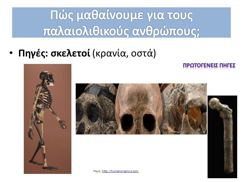 Πηγές: σκελετοί (κρανία, οστά) Πηγή: http://humanorigins.si.eduhttp://humanorigins.si.edu