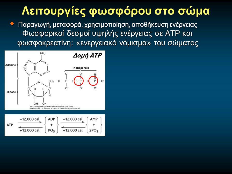 Λειτουργίες φωσφόρου στο σώμα Δομή ΑΤΡ  Παραγωγή, μεταφορά, χρησιμοποίηση, αποθήκευση ενέργειας Φωσφορικοί δεσμοί υψηλής ενέργειας σε ATP και φωσφοκρεατίνη: «ενεργειακό νόμισμα» του σώματος