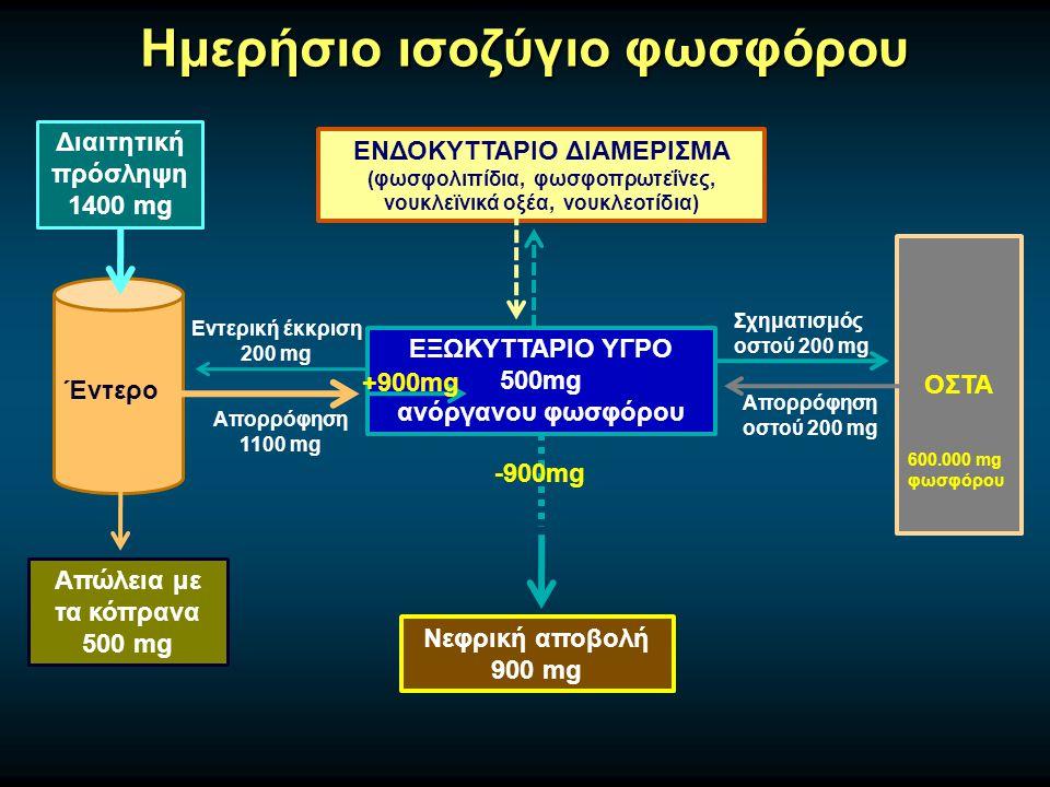 Ημερήσιο ισοζύγιο φωσφόρου Διαιτητική πρόσληψη 1400 mg Έντερο Απώλεια με τα κόπρανα 500 mg ΕΞΩΚΥΤΤΑΡΙΟ ΥΓΡΟ 500mg ανόργανου φωσφόρου ΕΝΔΟΚΥΤΤΑΡΙΟ ΔΙΑΜΕΡΙΣΜΑ (φωσφολιπίδια, φωσφοπρωτεΐνες, νουκλεϊνικά οξέα, νουκλεοτίδια) ΟΣΤΑ Σχηματισμός οστού 200 mg Απορρόφηση οστού 200 mg Απορρόφηση 1100 mg Εντερική έκκριση 200 mg Νεφρική αποβολή 900 mg +900mg 600.000 mg φωσφόρου -900mg
