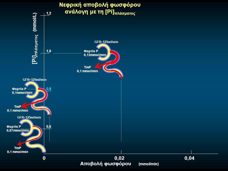Νεφρική αποβολή φωσφόρου ανάλογη με τη [Pi] πλάσματος 0,8 GFR=125ml/min Φορτίο Ρ 0,07mmol/min TmP 0,1 mmol/min GFR=125ml/min Φορτίο Ρ 0,12mmol/min TmP 0,1 mmol/min 0,6 1,0 1,2 [Pi] πλάσματος (mmol/L) Αποβολή φωσφόρου (mmol/min) GFR=125ml/min Φορτίο Ρ 0,1mmol/min TmP 0,1 mmol/min 00,020,04