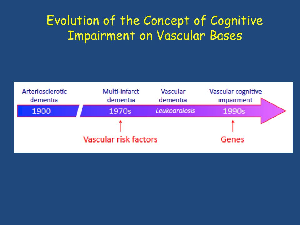 Evolution of the Concept of Cognitive Impairment on Vascular Bases