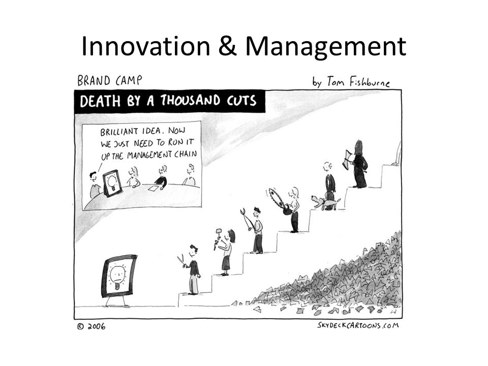 Innovation & Management