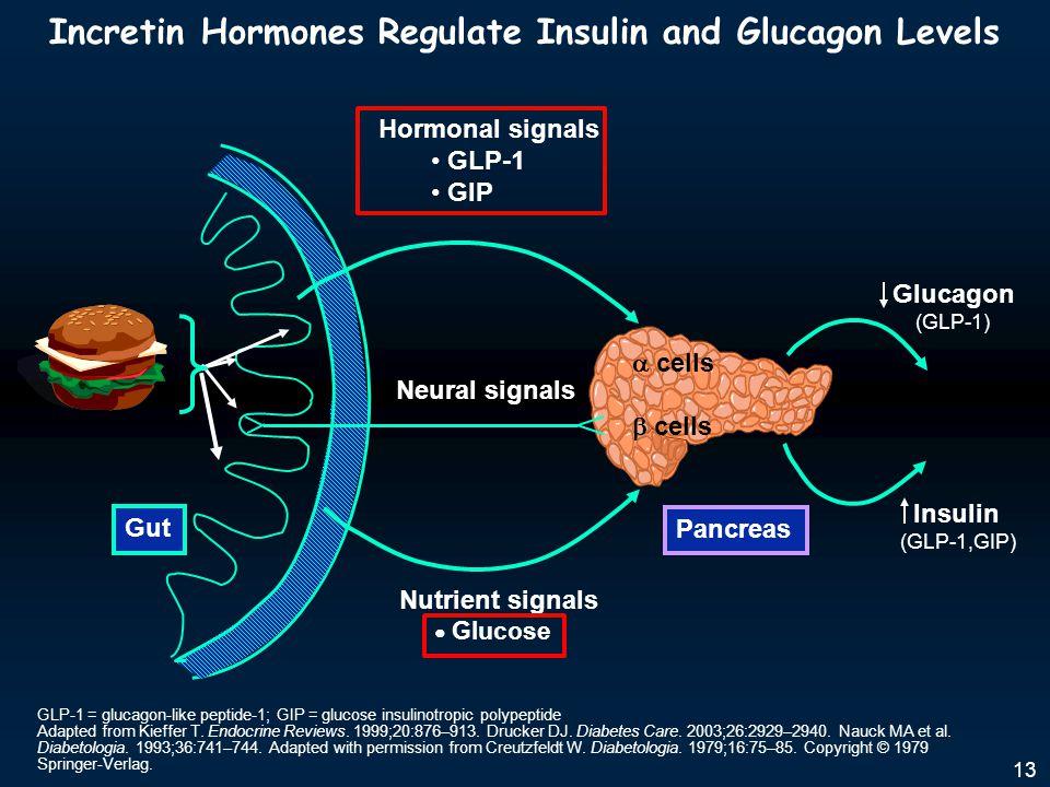 Incretin Hormones Regulate Insulin and Glucagon Levels GLP-1 = glucagon-like peptide-1; GIP = glucose insulinotropic polypeptide Adapted from Kieffer