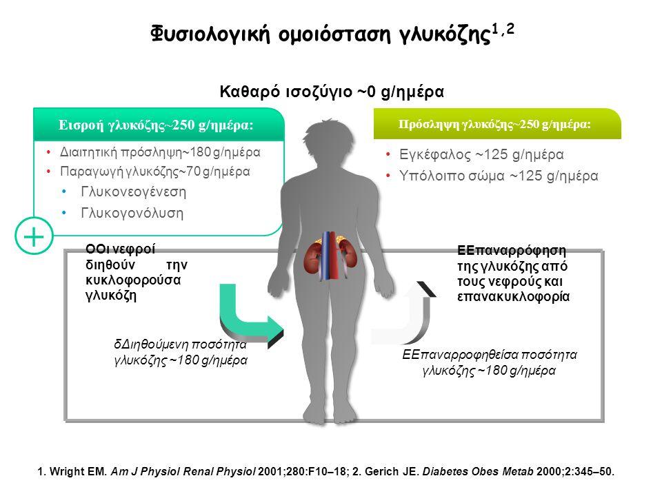 Εγκέφαλος ~125 g/ημέρα Υπόλοιπο σώμα ~125 g/ημέρα Πρόσληψη γλυκόζης~250 g/ημέρα: − Διαιτητική πρόσληψη~180 g/ημέρα Παραγωγή γλυκόζης~70 g/ημέρα Γλυκον