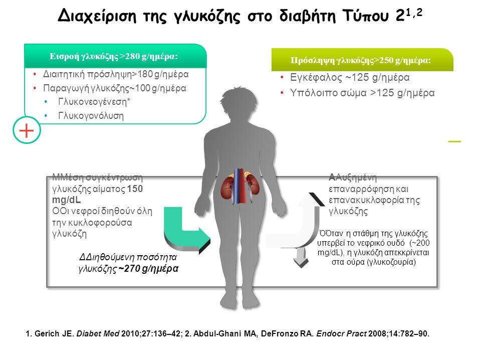 Διαιτητική πρόσληψη>180 g/ημέρα Παραγωγή γλυκόζης~100 g/ημέρα Γλυκονεογένεση* Γλυκογονόλυση Εισροή γλυκόζης >280 g/ημέρα: Εγκέφαλος ~125 g/ημέρα Υπόλο