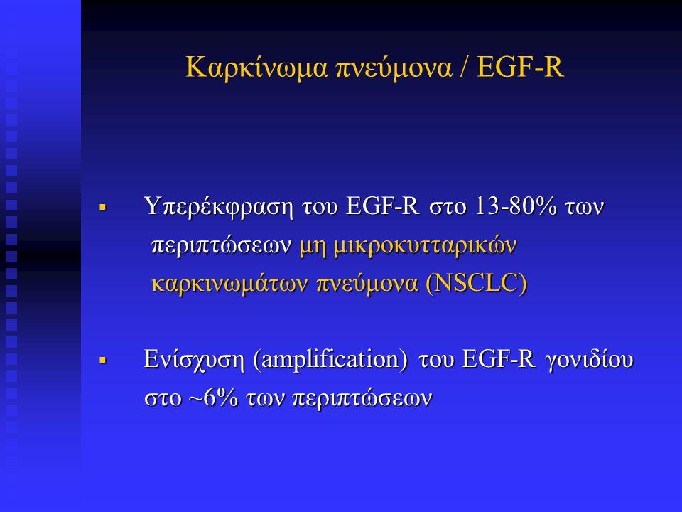 EGF-R σε μη μικροκυτταρικό καρκίνωμα πνεύμονα