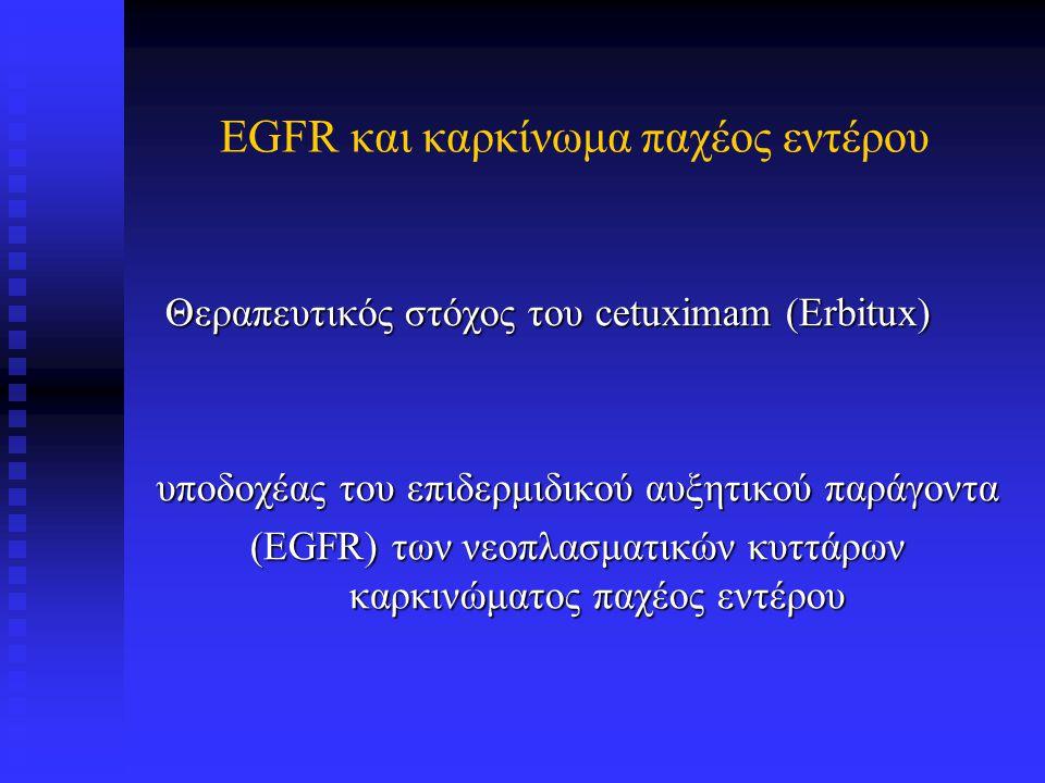 VEGFR και καρκίνωμα παχέος εντέρου Θεραπευτικός στόχος του Bevacizumab (Avastin) Θεραπευτικός στόχος του Bevacizumab (Avastin) υποδοχέας του αγγειακoύ ενδοθηλιακού αυξητικού παράγοντα (VEGFR) των νεοπλασματικών κυττάρων καρκινώματος παχέος εντέρου