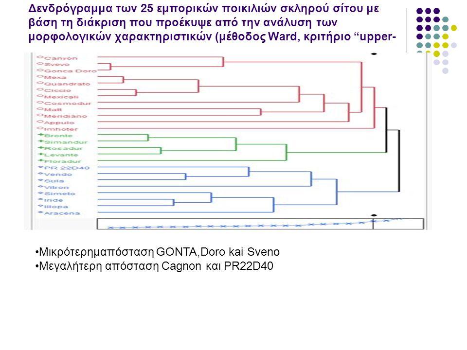 Δενδρόγραμμα των 25 εμπορικών ποικιλιών σκληρού σίτου με βάση τη διάκριση που προέκυψε από την ανάλυση των μορφολογικών χαρακτηριστικών (μέθοδος Ward, κριτήριο upper- tail για α=0,10) Μικρότερημαπόσταση GONTA,Doro kai Sveno Μεγαλήτερη απόσταση Cagnon και PR22D40