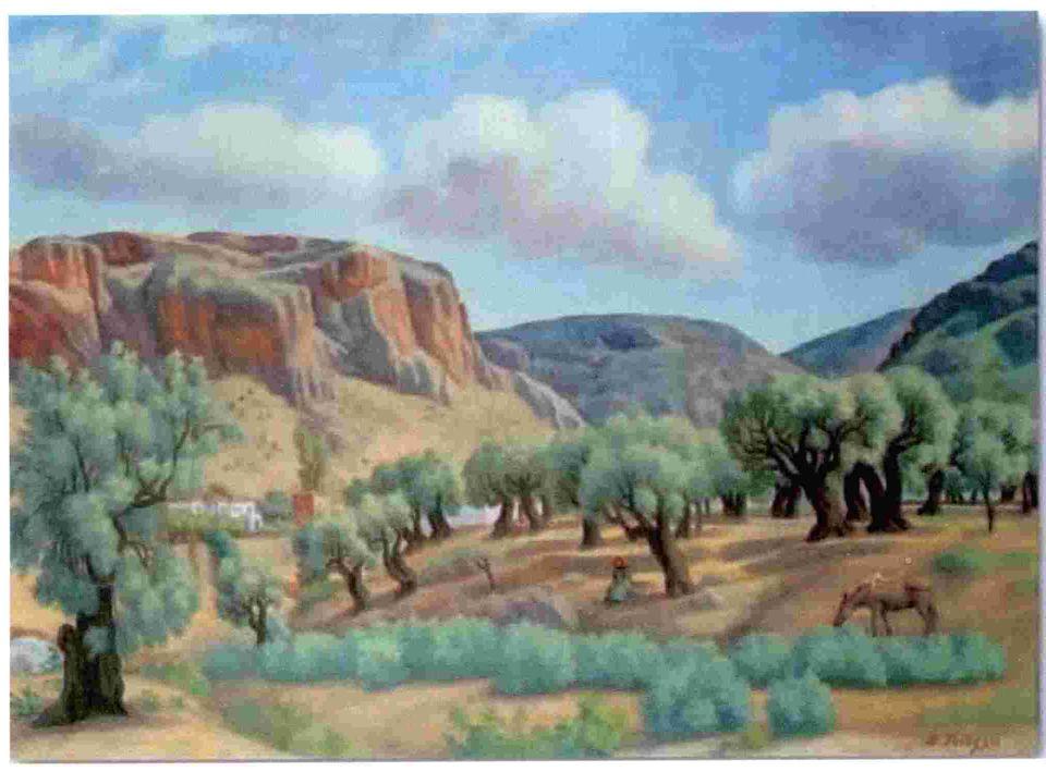 Συλλογή του καρπού Μια από τις πιο χαρακτηριστικές εικόνες της ελληνικής υπαίθρου είναι η συγκομιδή της ελιάς, το γνωστό «λιομάζεμα» Εργασία βασισμένη σε αρχέγονες, αλλά με διαχρονική εφαρμογή, τεχνικές στις οποίες κυριαρχεί το ανθρώπινο στοιχείο και η συλλογική εργασία.