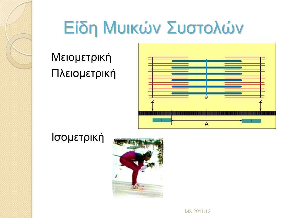 Είδη Μυικών Συστολών Είδη Μυικών Συστολών Μειομετρική Πλειομετρική Ισομετρική MS 2011/12