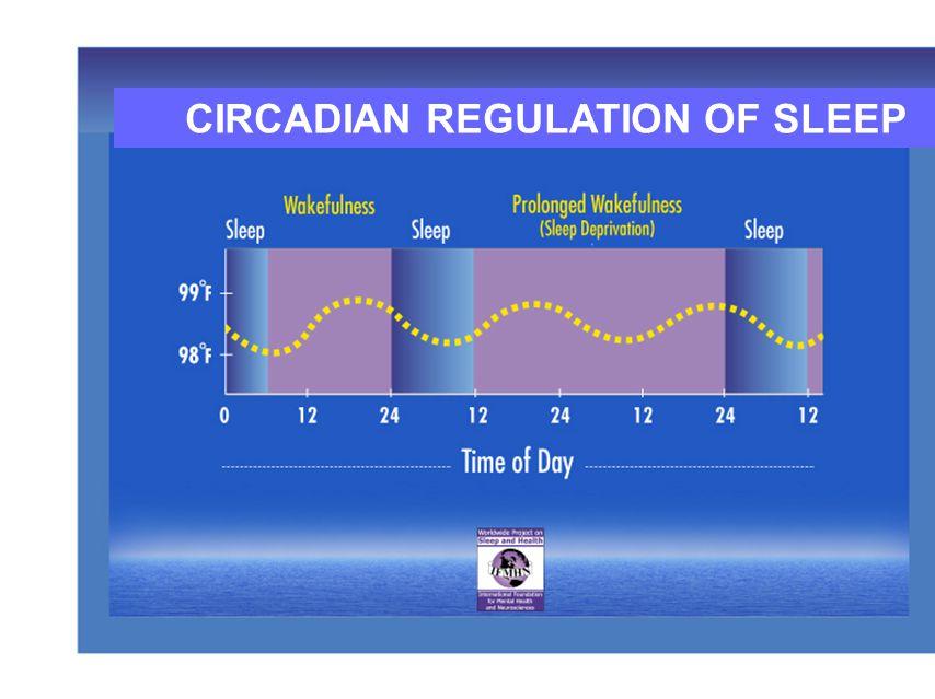 CIRCADIAN REGULATION OF SLEEP