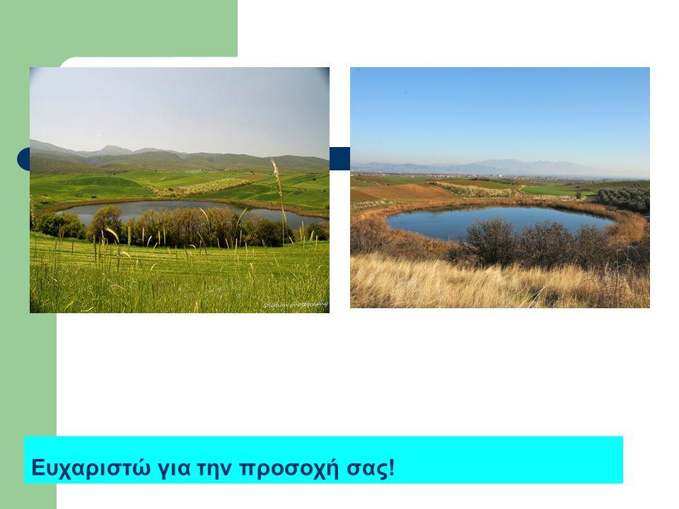 Λίμνες Ζερέλια Οι λίμνες Ζερέλια ή Ζηρέλια είναι δύο λίμνες κυκλικού σχήματος, που βρίσκονται 4 χιλιόμετρα Νοτιοδυτικά της πόλης του Αλμυρού και 2,5χλ