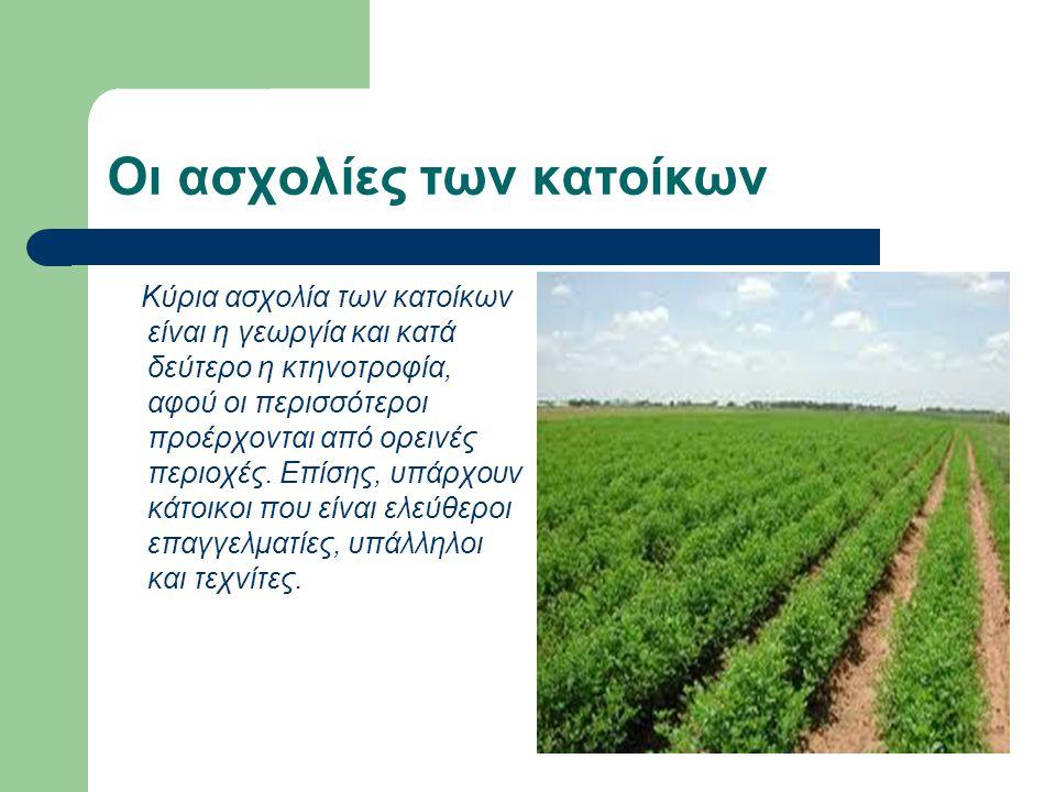 Οι ασχολίες των κατοίκων Κύρια ασχολία των κατοίκων είναι η γεωργία και κατά δεύτερο η κτηνοτροφία, αφού οι περισσότεροι προέρχονται από ορεινές περιοχές.